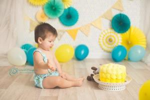 Smash Cake: Leo